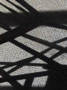 """01-24-15 """"shadow play"""""""