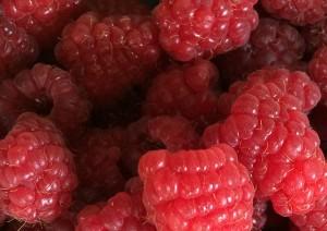 "07-02-15 ""raspberries red"""