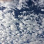 """11-11-15 """"blue sky clouds"""""""